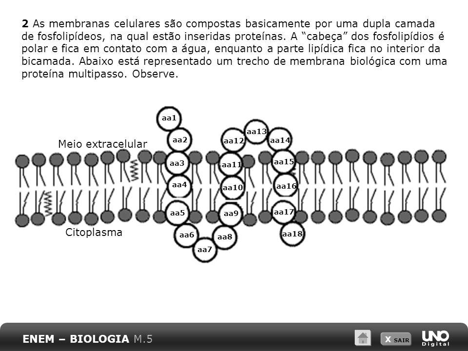 X SAIR 2 As membranas celulares são compostas basicamente por uma dupla camada de fosfolipídeos, na qual estão inseridas proteínas. A cabeça dos fosfo