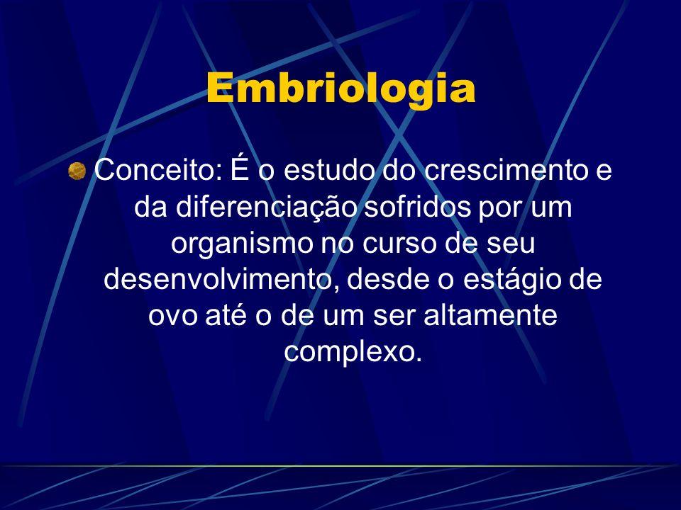 Formação do embrião Fecundação; Segmentação ou Clivagem; Blastulação; Gastrulação; Neurulação.