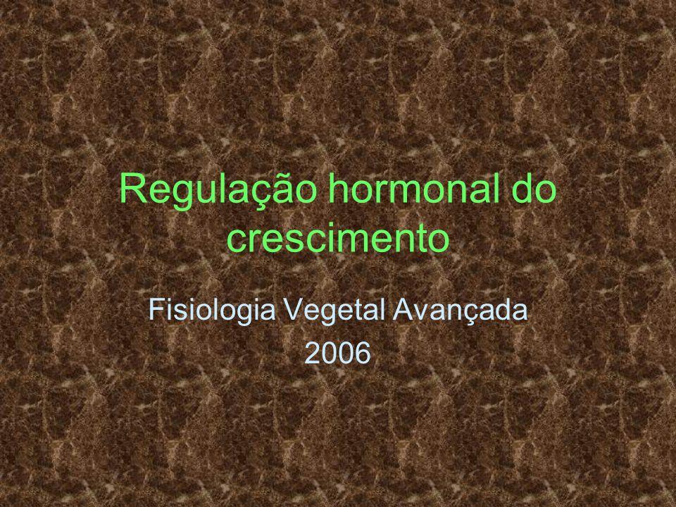 Regulação hormonal do crescimento Fisiologia Vegetal Avançada 2006