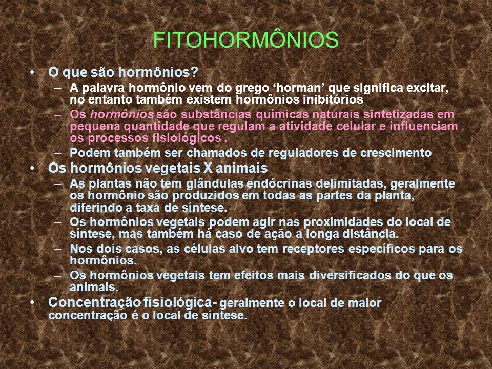 FITOHORMÔNIOS O que são hormônios? –A palavra hormônio vem do grego horman que significa excitar, no entanto também existem hormônios inibitórios –Os