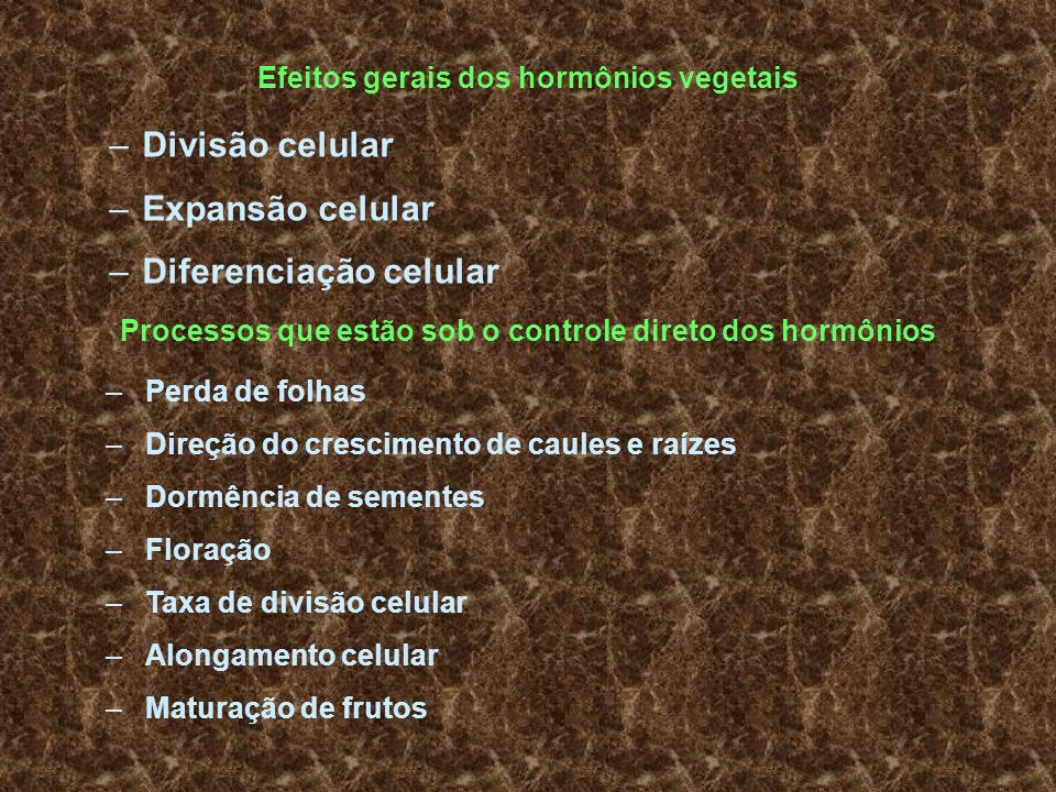 Efeitos gerais dos hormônios vegetais –Divisão celular –Expansão celular –Diferenciação celular Processos que estão sob o controle direto dos hormônio