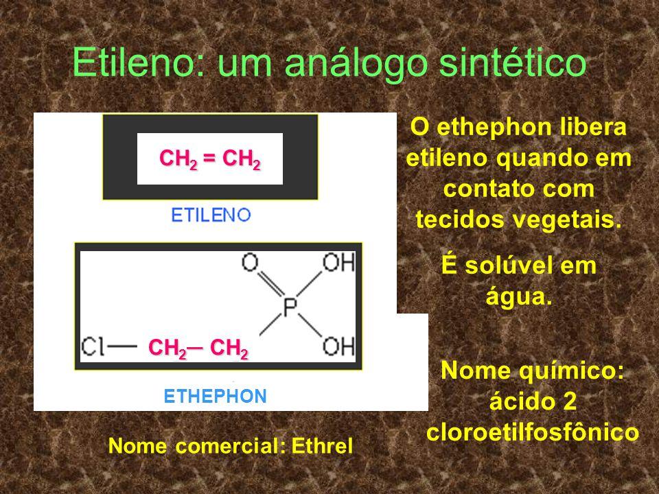 Etileno: um análogo sintético O ethephon libera etileno quando em contato com tecidos vegetais. É solúvel em água. ETHEPHON Nome comercial: Ethrel Nom