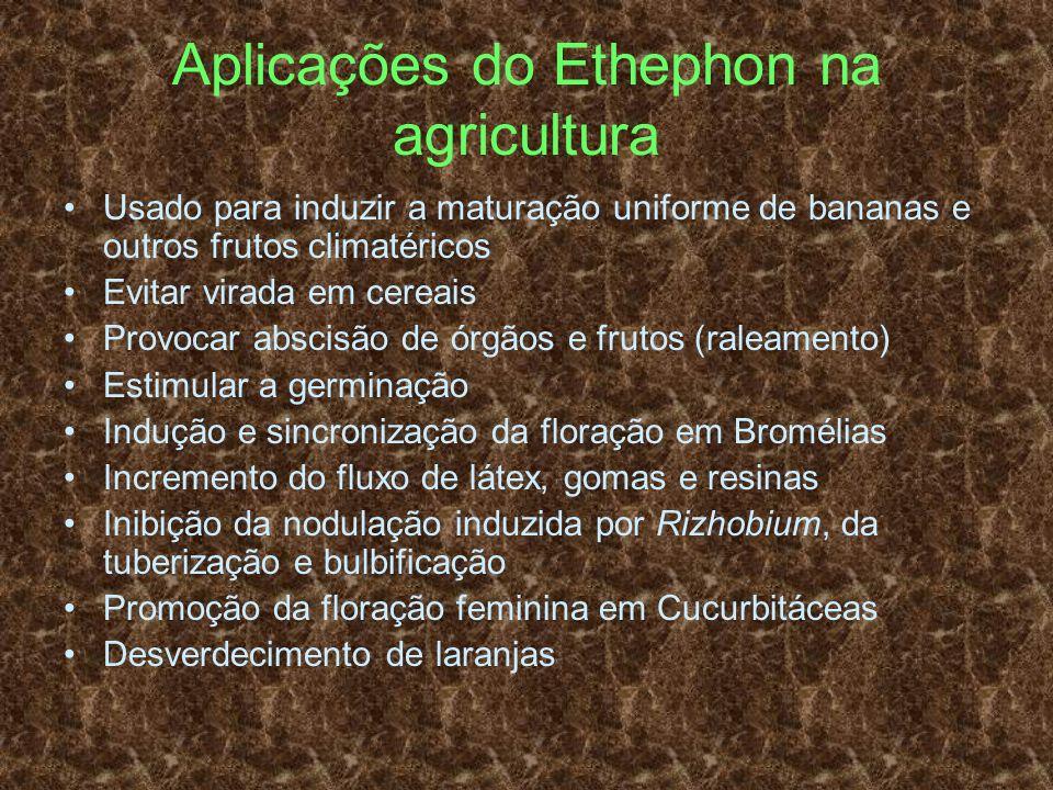 Aplicações do Ethephon na agricultura Usado para induzir a maturação uniforme de bananas e outros frutos climatéricos Evitar virada em cereais Provoca