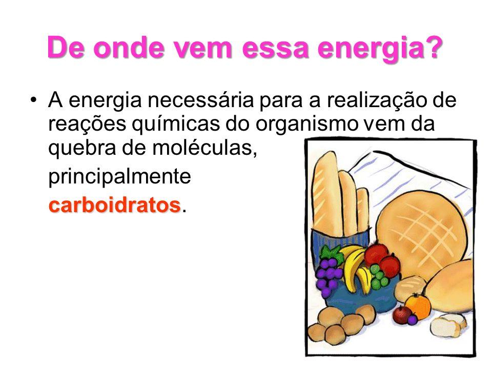 De onde vem essa energia? A energia necessária para a realização de reações químicas do organismo vem da quebra de moléculas, principalmente carboidra