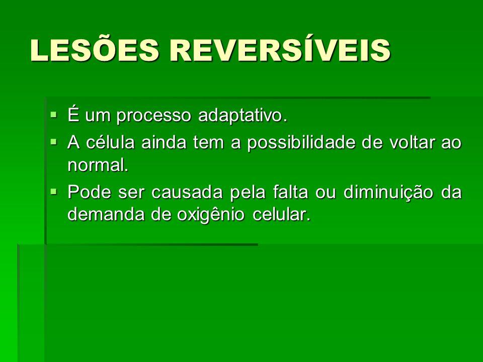LESÕES REVERSÍVEIS É um processo adaptativo.É um processo adaptativo.