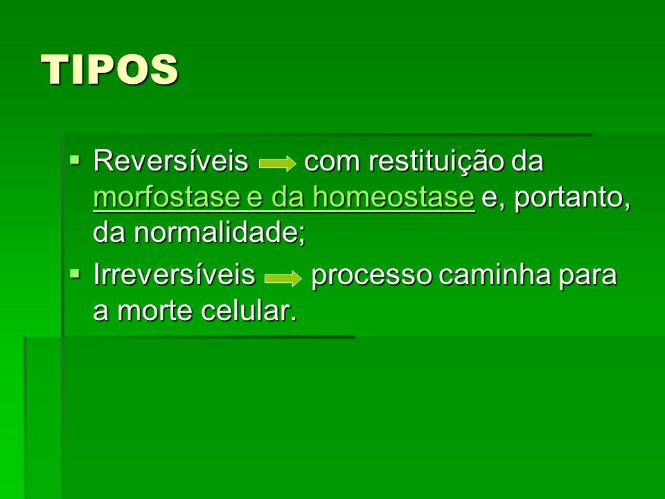TIPOS Reversíveis com restituição da morfostase e da homeostase e, portanto, da normalidade; Reversíveis com restituição da morfostase e da homeostase e, portanto, da normalidade; morfostase e da homeostase morfostase e da homeostase Irreversíveis processo caminha para a morte celular.