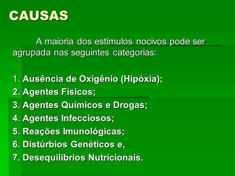 CAUSAS A maioria dos estímulos nocivos pode ser agrupada nas seguintes categorias: 1.