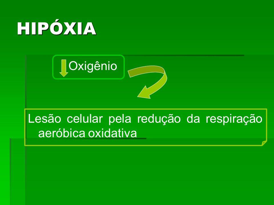 HIPÓXIA Oxigênio Lesão celular pela redução da respiração aeróbica oxidativa