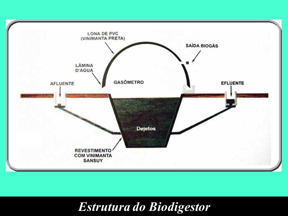 Estrutura do Biodigestor
