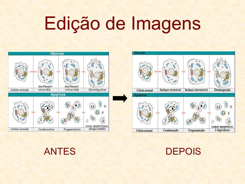 Edição de Imagens ANTESDEPOIS