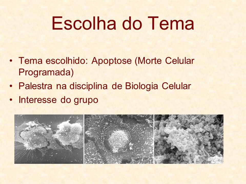 Escolha do Tema Tema escolhido: Apoptose (Morte Celular Programada) Palestra na disciplina de Biologia Celular Interesse do grupo