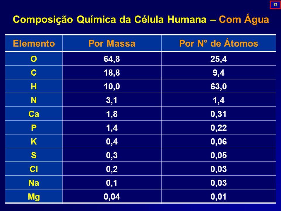 ElementoPor MassaPor N° de Átomos O64,825,4 C18,89,4 H10,063,0 N3,11,4 Ca1,80,31 P1,40,22 K0,40,06 S0,30,05 Cl0,20,03 Na0,10,03 Mg0,040,01 Composição
