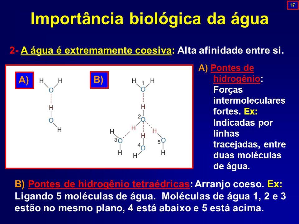 2- A água é extremamente coesiva: Alta afinidade entre si. Importância biológica da água B) Pontes de hidrogênio tetraédricas: Arranjo coeso. Ex: Liga