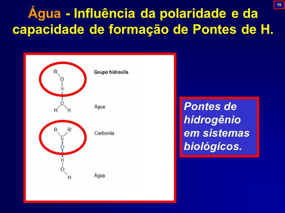 Pontes de hidrogênio em sistemas biológicos. Água - Influência da polaridade e da capacidade de formação de Pontes de H. 19