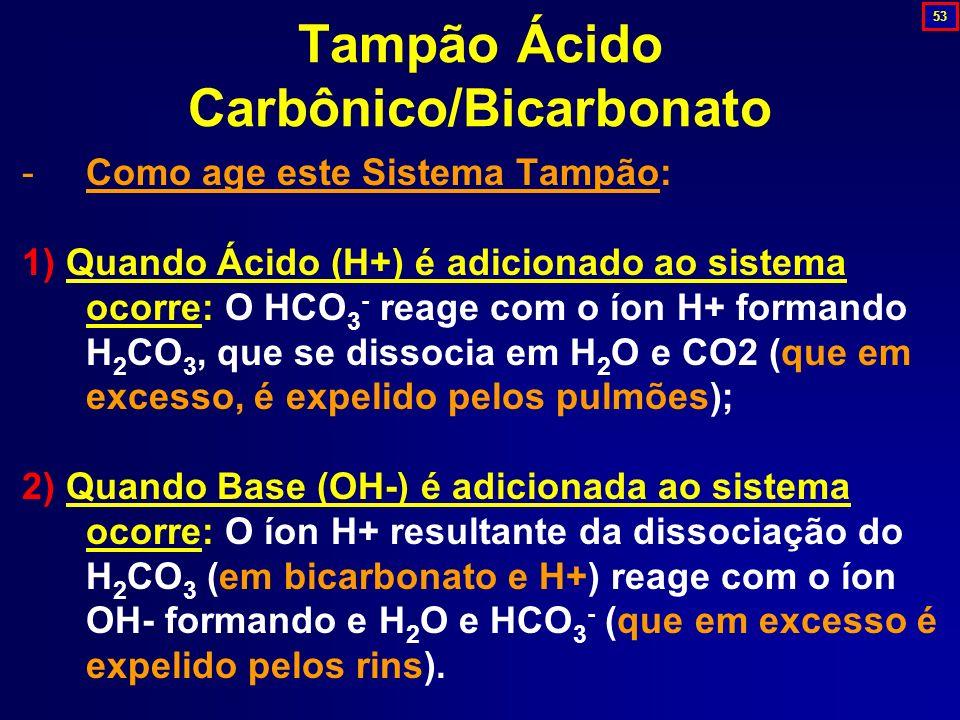 Tampão Ácido Carbônico/Bicarbonato -Como age este Sistema Tampão: 1) Quando Ácido (H+) é adicionado ao sistema ocorre: O HCO 3 - reage com o íon H+ fo
