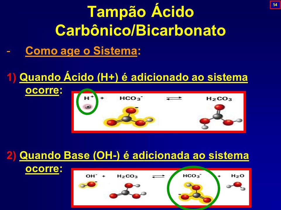 Tampão Ácido Carbônico/Bicarbonato -Como age o Sistema: 1) Quando Ácido (H+) é adicionado ao sistema ocorre: 2) Quando Base (OH-) é adicionada ao sist