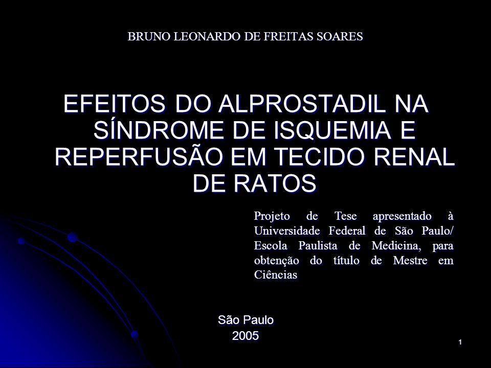 1 BRUNO LEONARDO DE FREITAS SOARES EFEITOS DO ALPROSTADIL NA SÍNDROME DE ISQUEMIA E REPERFUSÃO EM TECIDO RENAL DE RATOS São Paulo 2005 Projeto de Tese