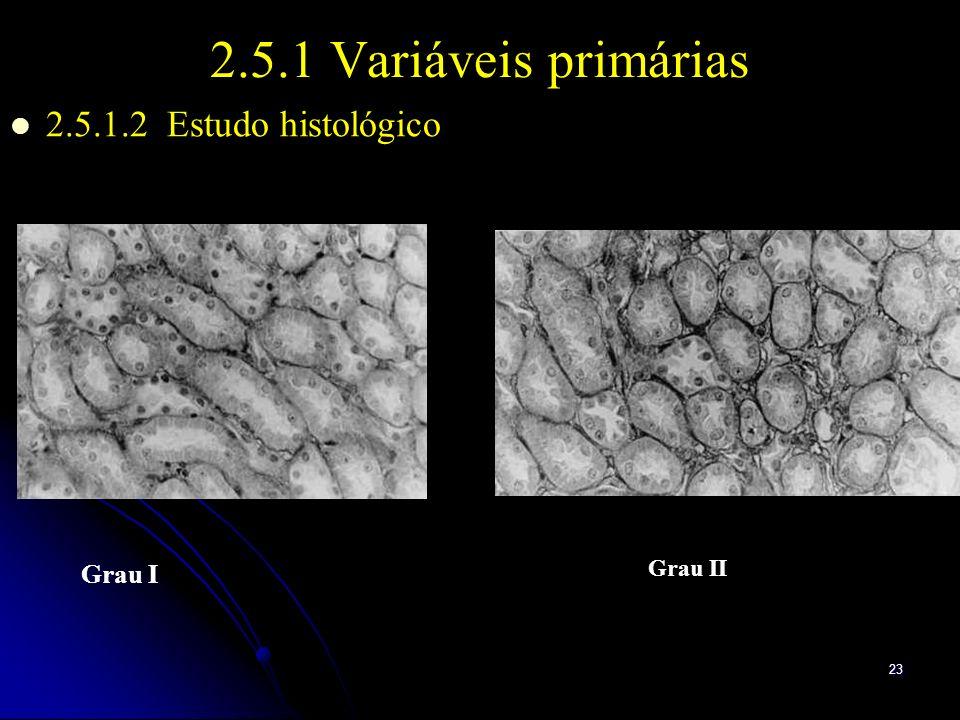 23 2.5.1 Variáveis primárias 2.5.1.2 Estudo histológico Grau I Grau II