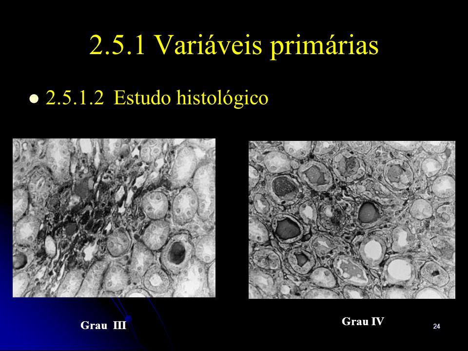 24 2.5.1 Variáveis primárias 2.5.1.2 Estudo histológico Grau III Grau IV