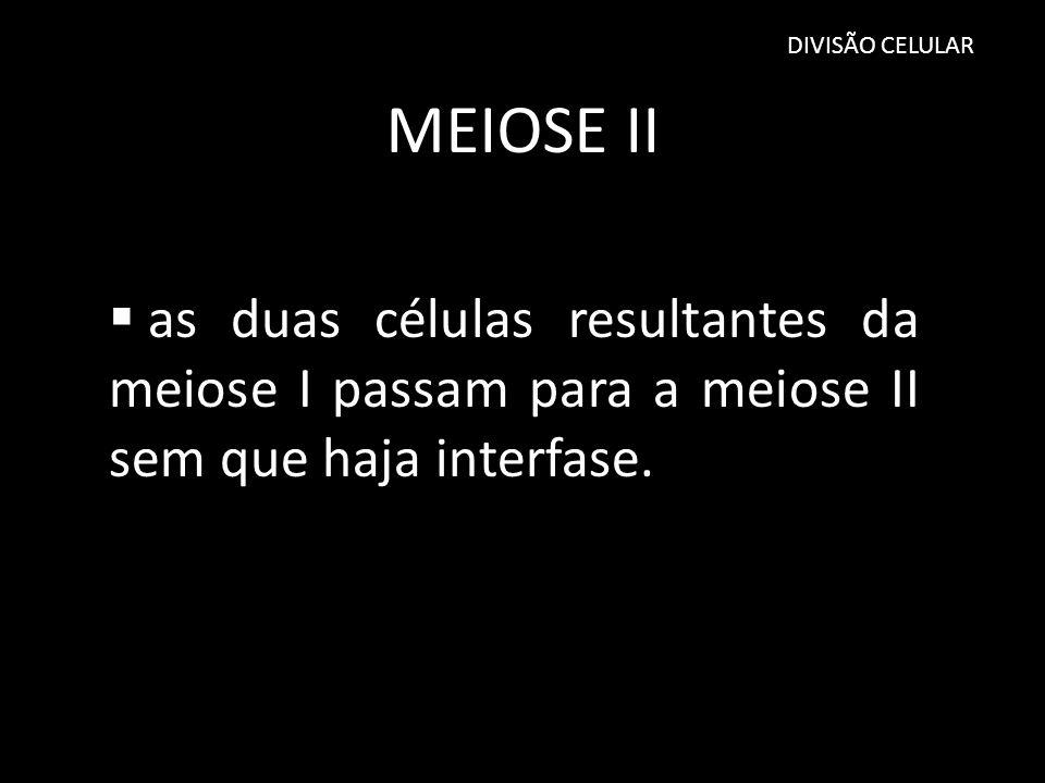 MEIOSE II as duas células resultantes da meiose I passam para a meiose II sem que haja interfase. DIVISÃO CELULAR