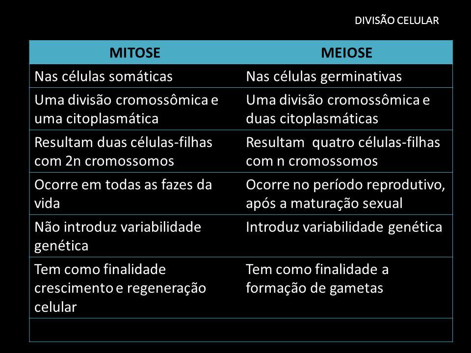 DIVISÃO CELULAR MITOSEMEIOSE Nas células somáticasNas células germinativas Uma divisão cromossômica e uma citoplasmática Uma divisão cromossômica e du