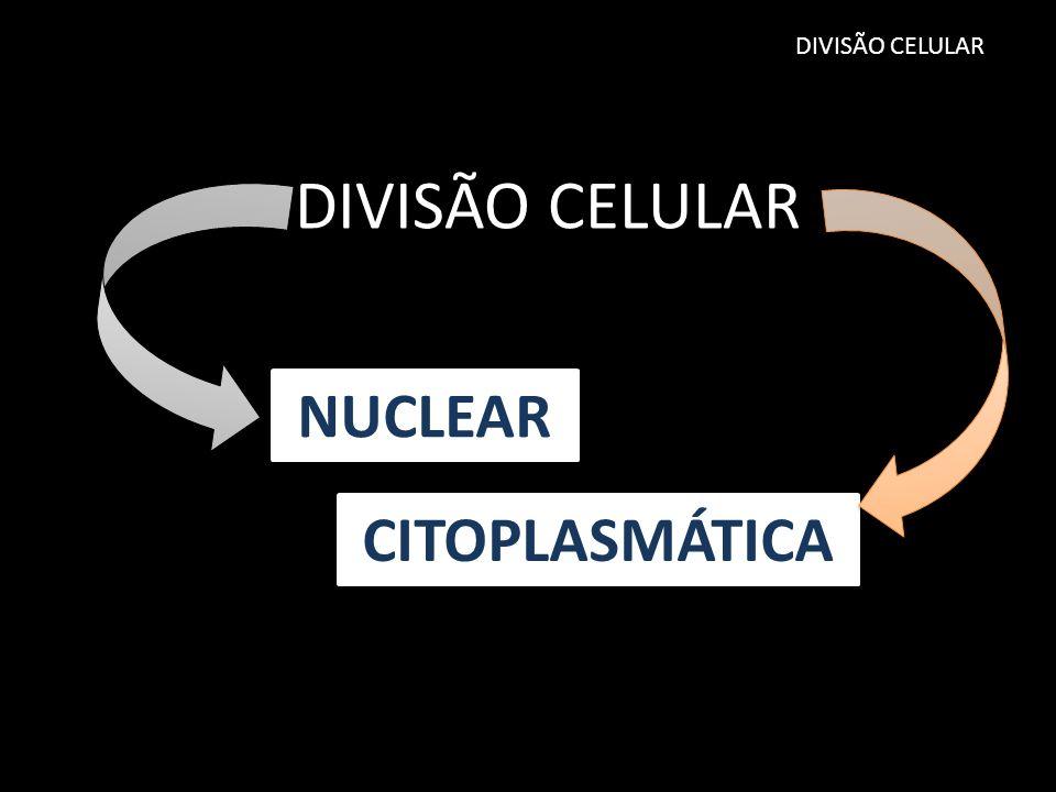NUCLEAR CITOPLASMÁTICA DIVISÃO CELULAR