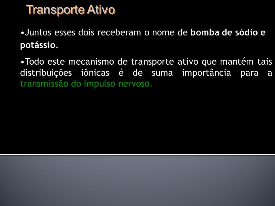 Transporte Ativo Juntos esses dois receberam o nome de bomba de sódio e potássio.
