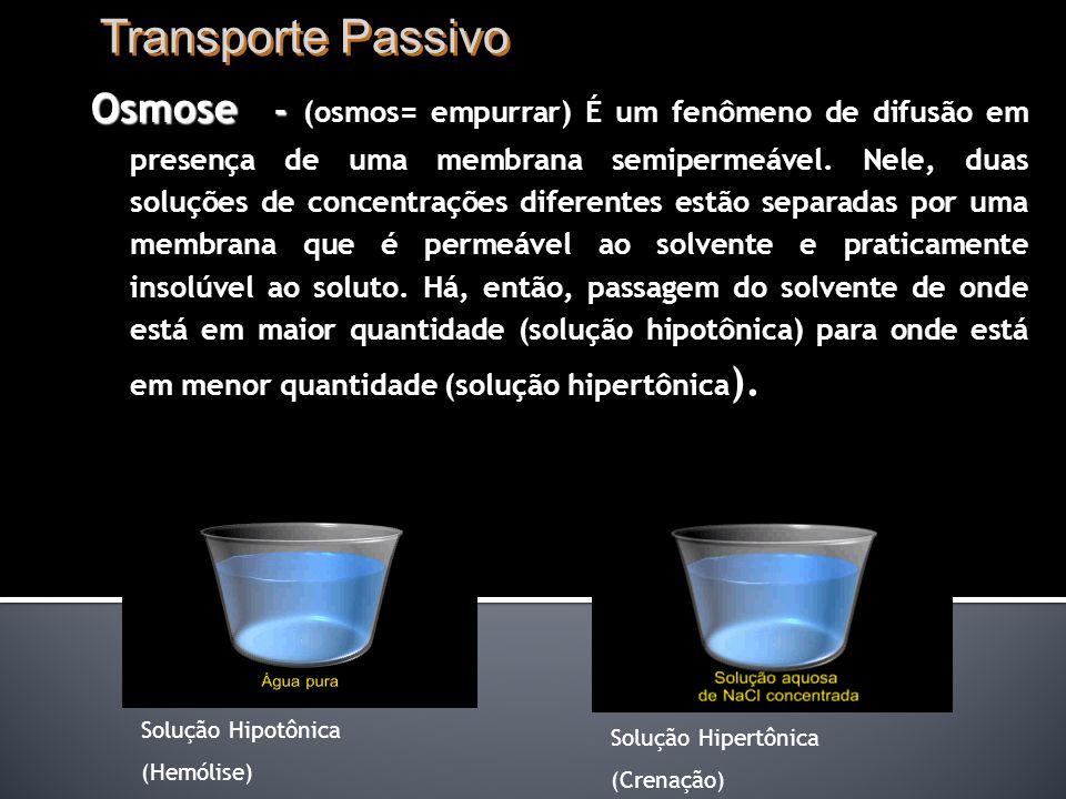 Transporte Passivo Osmose - Osmose - (osmos= empurrar) É um fenômeno de difusão em presença de uma membrana semipermeável.