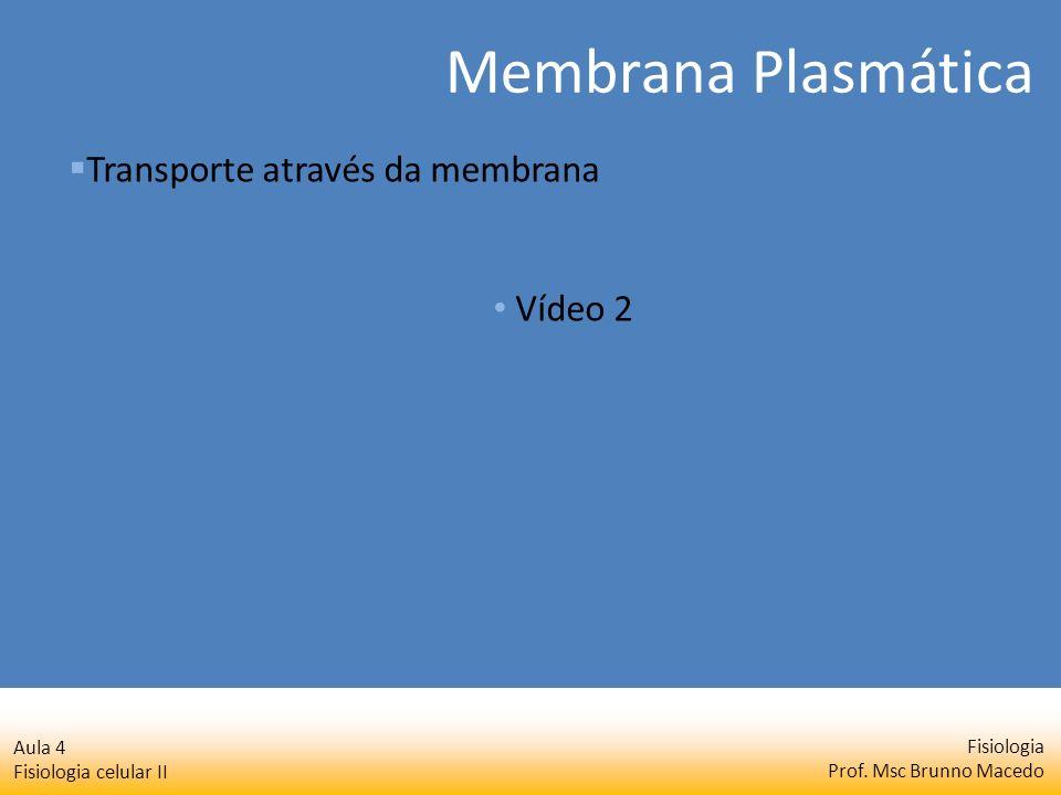 Fisiologia Prof. Msc Brunno Macedo Aula 4 Fisiologia celular II Transporte através da membrana Vídeo 2 Membrana Plasmática