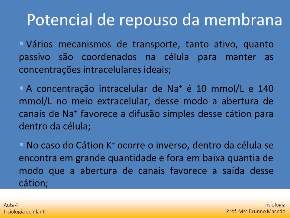 Fisiologia Prof. Msc Brunno Macedo Aula 4 Fisiologia celular II Vários mecanismos de transporte, tanto ativo, quanto passivo são coordenados na célula