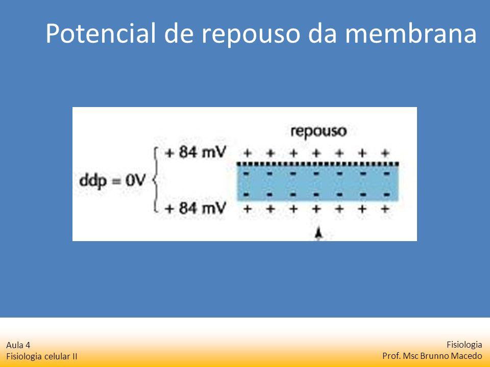 Fisiologia Prof. Msc Brunno Macedo Aula 4 Fisiologia celular II Potencial de repouso da membrana