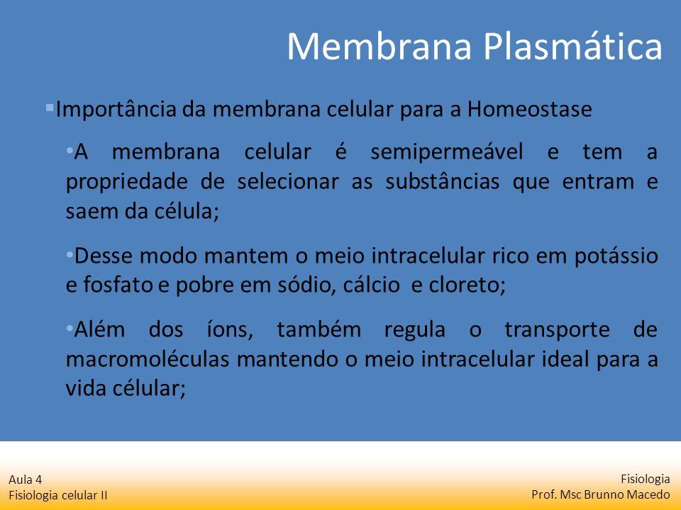 Fisiologia Prof. Msc Brunno Macedo Aula 4 Fisiologia celular II A membrana celular é semipermeável e tem a propriedade de selecionar as substâncias qu
