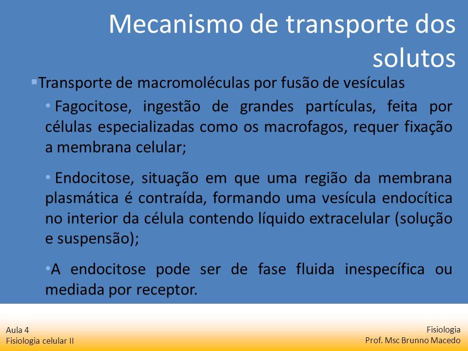Fisiologia Prof. Msc Brunno Macedo Aula 4 Fisiologia celular II Fagocitose, ingestão de grandes partículas, feita por células especializadas como os m
