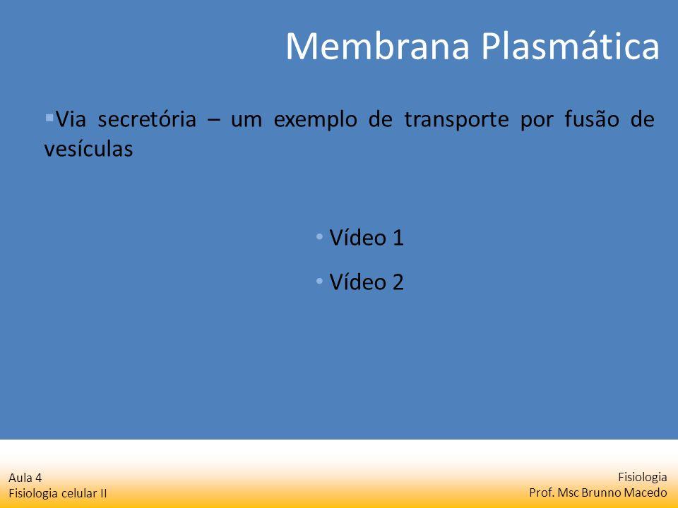 Fisiologia Prof. Msc Brunno Macedo Aula 4 Fisiologia celular II Membrana Plasmática Via secretória – um exemplo de transporte por fusão de vesículas V