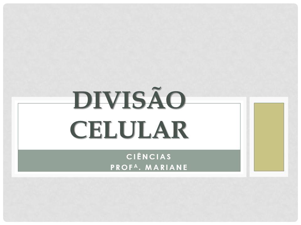 CIÊNCIAS PROF A. MARIANE DIVISÃO CELULAR