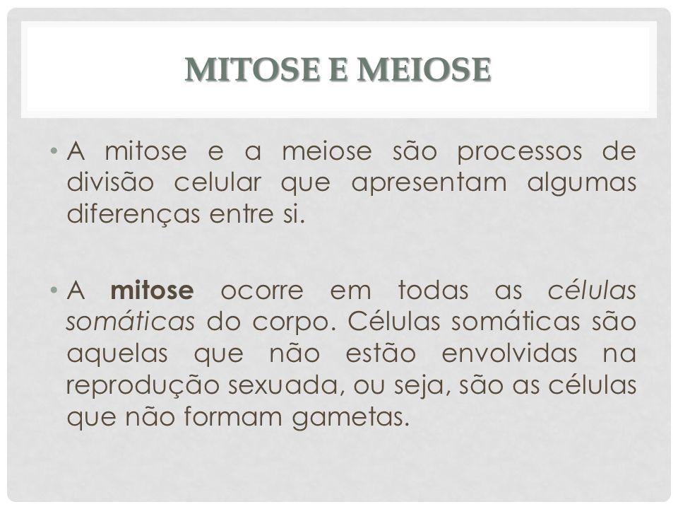 MITOSE E MEIOSE A mitose e a meiose são processos de divisão celular que apresentam algumas diferenças entre si. A mitose ocorre em todas as células s