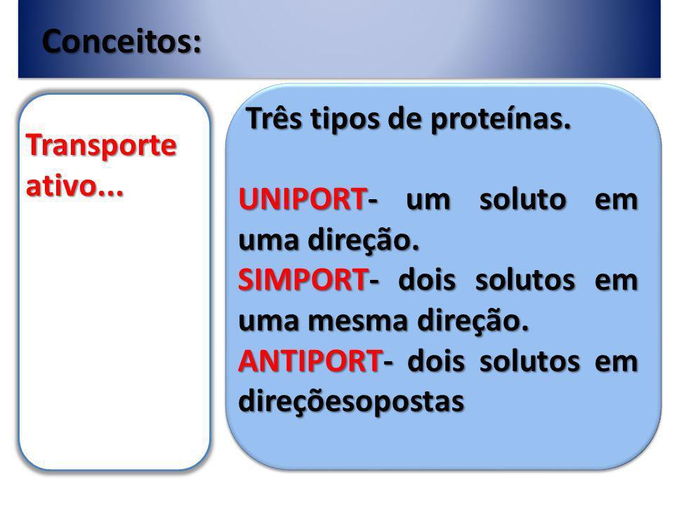 Conceitos: Transporte ativo...Três tipos de proteínas.