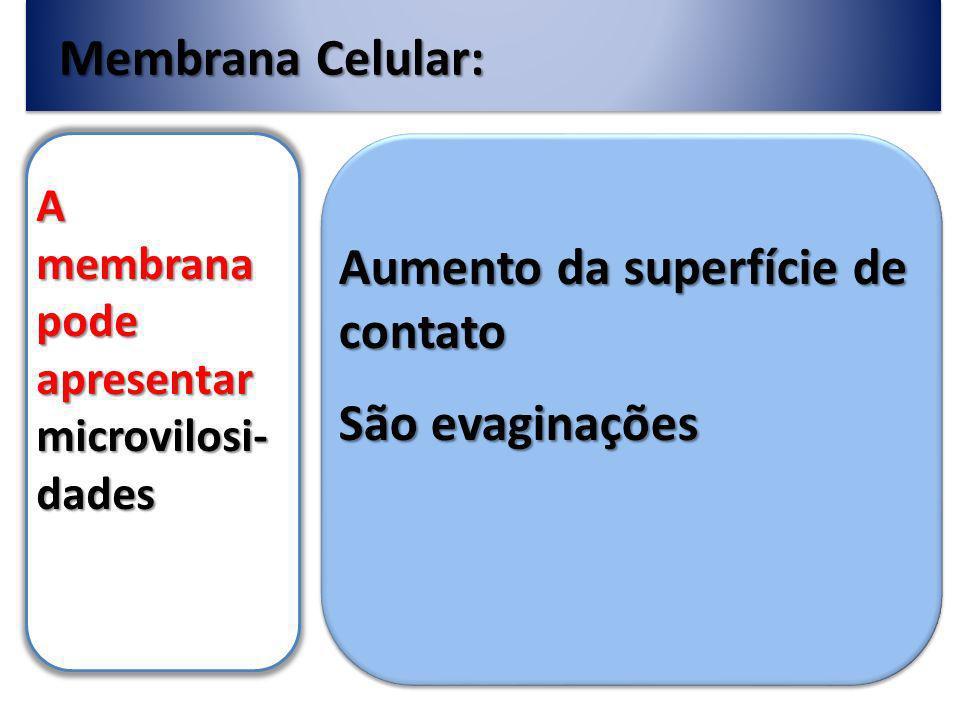 Membrana Celular: A membrana pode apresentar microvilosi- dades Aumento da superfície de contato São evaginações