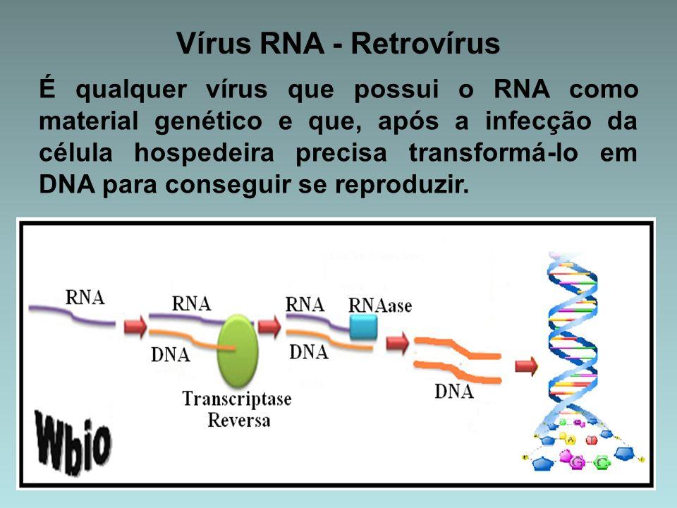 Vírus RNA - Retrovírus É qualquer vírus que possui o RNA como material genético e que, após a infecção da célula hospedeira precisa transformá-lo em D