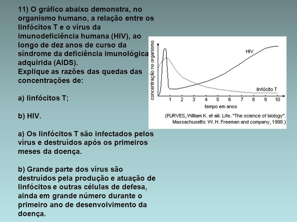11) O gráfico abaixo demonstra, no organismo humano, a relação entre os linfócitos T e o vírus da imunodeficiência humana (HIV), ao longo de dez anos