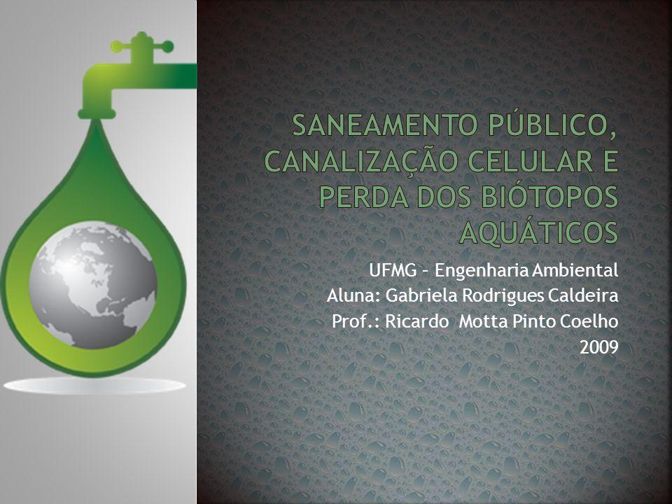 UFMG – Engenharia Ambiental Aluna: Gabriela Rodrigues Caldeira Prof.: Ricardo Motta Pinto Coelho 2009
