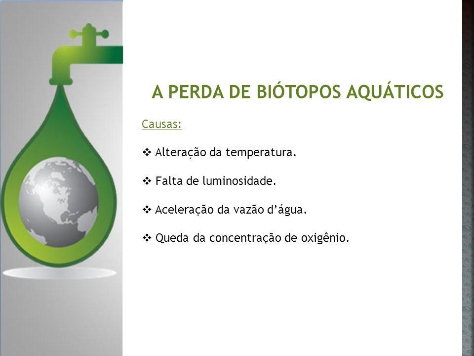 A PERDA DE BIÓTOPOS AQUÁTICOS Causas: Alteração da temperatura. Falta de luminosidade. Aceleração da vazão dágua. Queda da concentração de oxigênio.