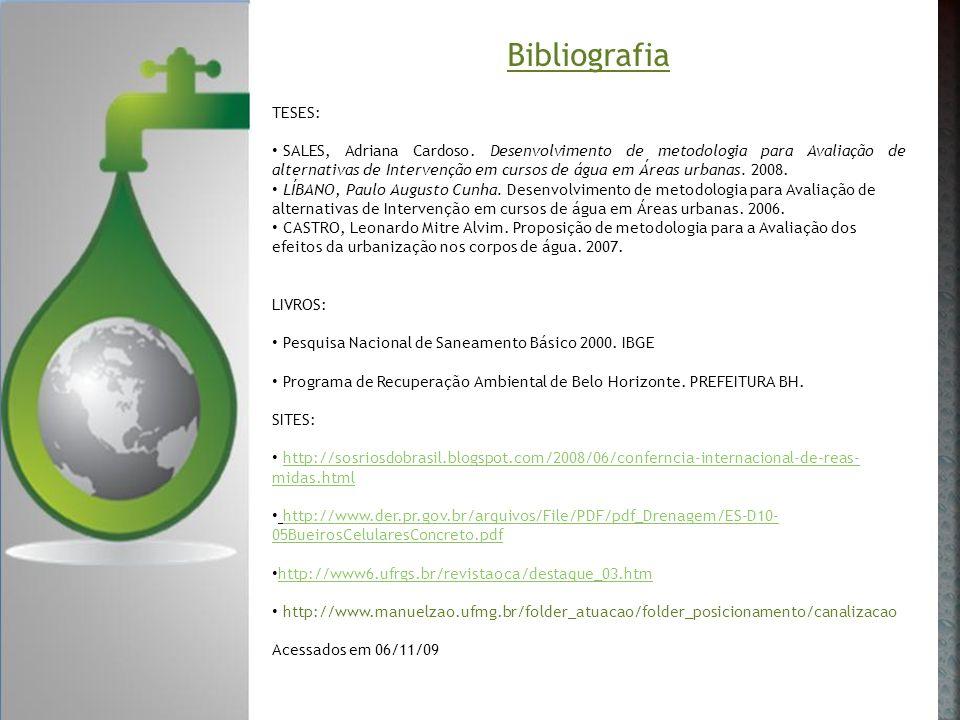 Bibliografia TESES: SALES, Adriana Cardoso. Desenvolvimento de metodologia para Avaliação de alternativas de Intervenção em cursos de água em Áreas ur