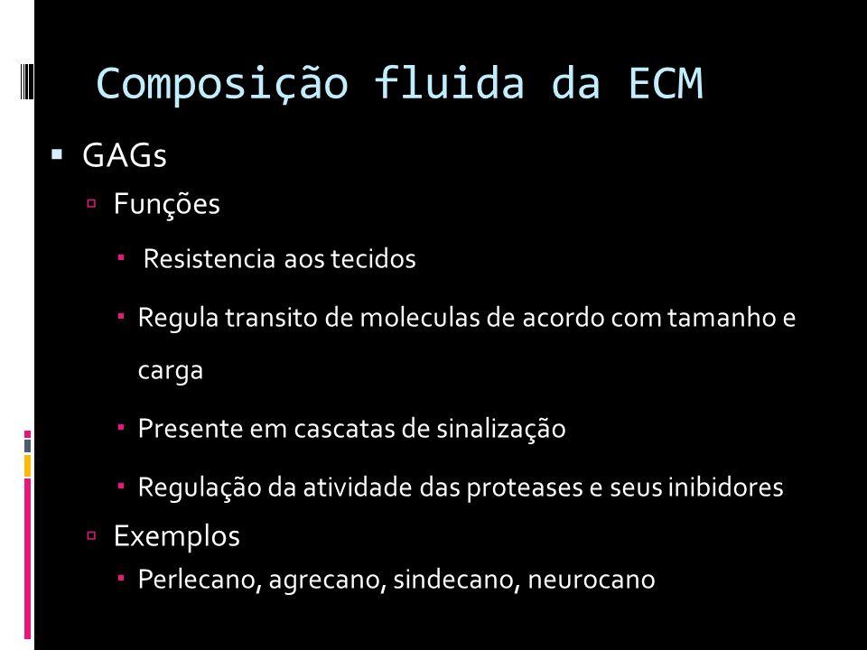 Composição fluida da ECM GAGs Funções Resistencia aos tecidos Regula transito de moleculas de acordo com tamanho e carga Presente em cascatas de sinal