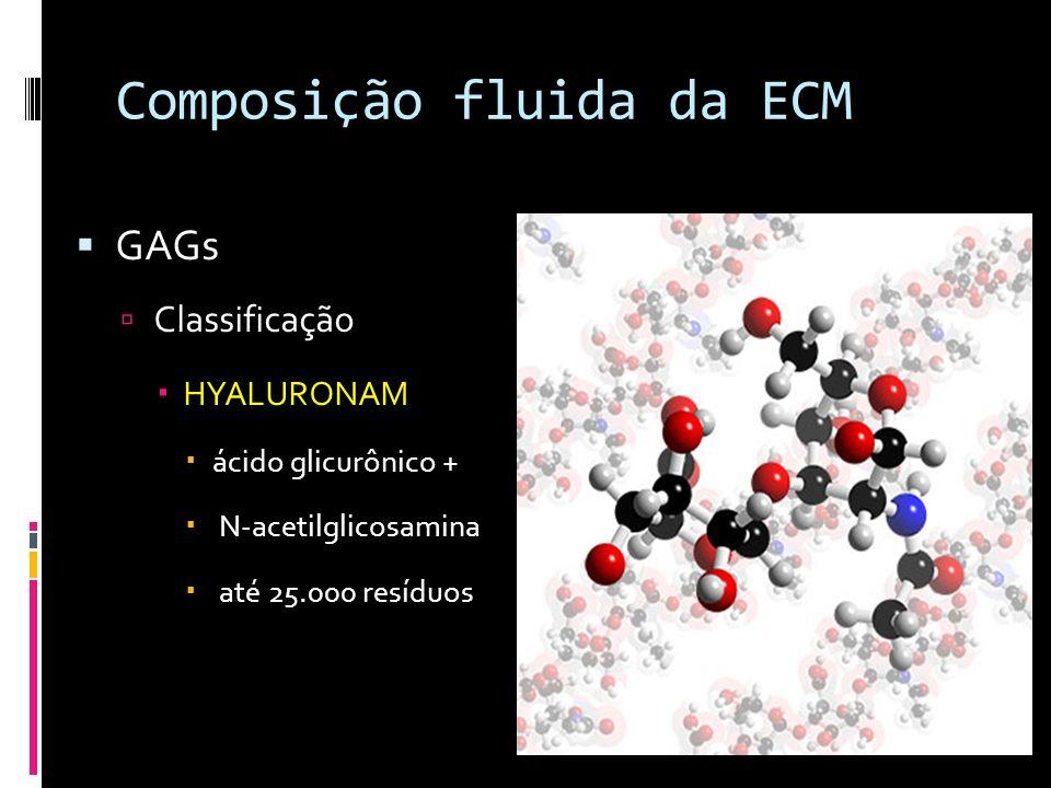 Composição fluida da ECM GAGs Classificação HYALURONAM ácido glicurônico + N-acetilglicosamina até 25.000 resíduos