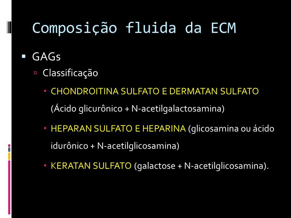 Composição fluida da ECM GAGs Classificação CHONDROITINA SULFATO E DERMATAN SULFATO (Ácido glicurônico + N-acetilgalactosamina) HEPARAN SULFATO E HEPA