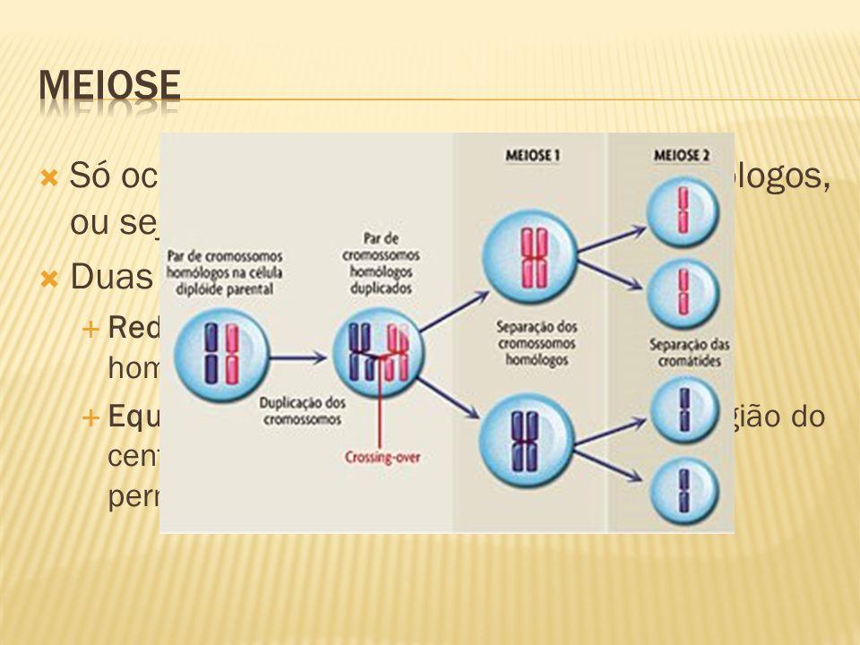 Só ocorre em células com pares de homólogos, ou seja, diploides; Duas divisões: Reducional: separação dos cromossomos homólogos; Equacional: divisão dos cromossomos na região do centrômero, e as cromátides se separam, permanecendo em células diferentes;