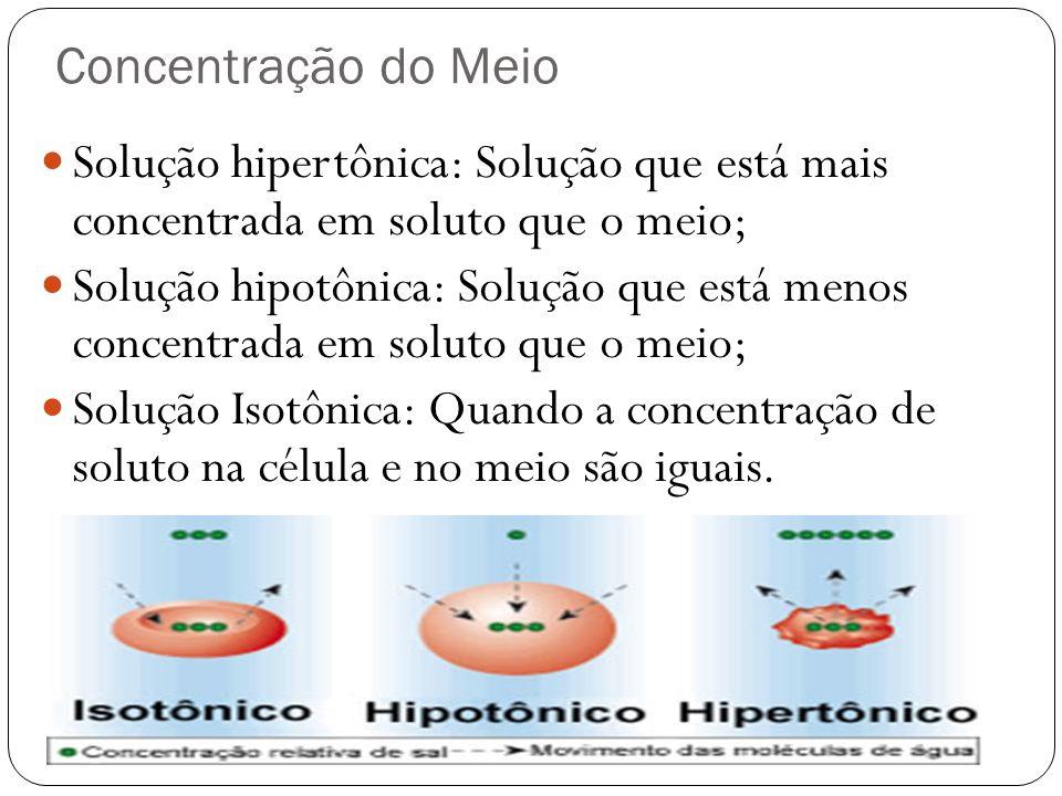 Concentração do Meio Solução hipertônica: Solução que está mais concentrada em soluto que o meio; Solução hipotônica: Solução que está menos concentra