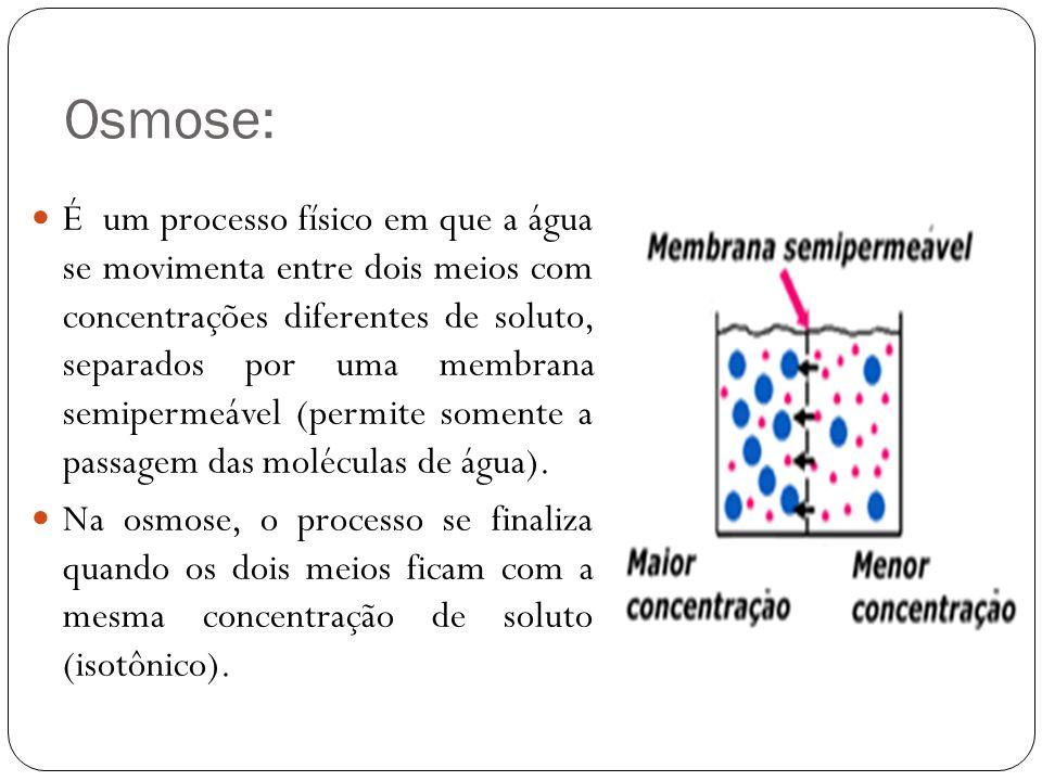 Osmose: É um processo físico em que a água se movimenta entre dois meios com concentrações diferentes de soluto, separados por uma membrana semipermeá