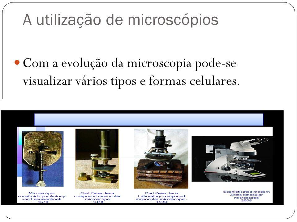 A utilização de microscópios Com a evolução da microscopia pode-se visualizar vários tipos e formas celulares.